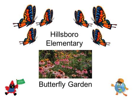 Hillsboro Elementary Butterfly Garden. Our butterfly garden will be… A place where we can watch and learn about butterflies A place where butterflies.