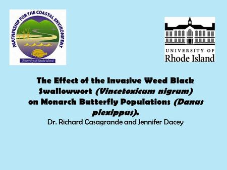 The Effect of the Invasive Weed Black Swallowwort (Vincetoxicum nigrum) on Monarch Butterfly Populations (Danus plexippus). Dr. Richard Casagrande and.