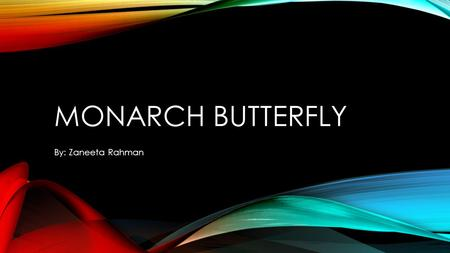 Monarch butterfly By: Zaneeta Rahman.