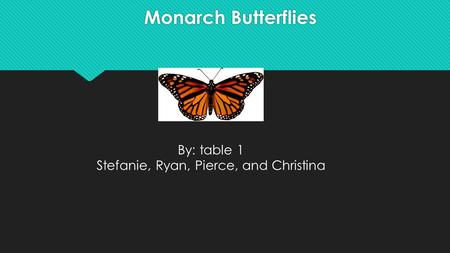 Monarch Butterflies By: table 1 Stefanie, Ryan, Pierce, and Christina.