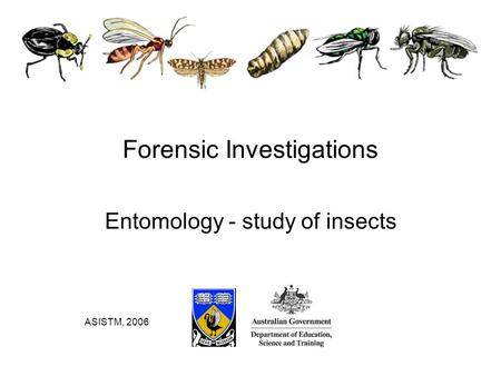 Entomology - study of insects Forensic Investigations ASISTM, 2006.