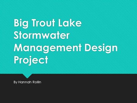 Big Trout Lake Stormwater Management Design Project By Hannah Rollin.