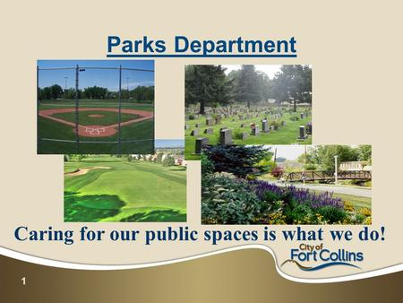 1 Parks Department Caring for our public spaces is what we do!