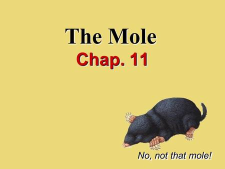 The Mole Chap. 11 No, not that mole!. I.Counting Particles.