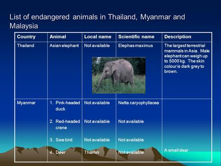 List of endangered animals in Thailand, Myanmar and Malaysia CountryAnimalLocal nameScientific nameDescription ThailandAsian elephantNot availableElephas.