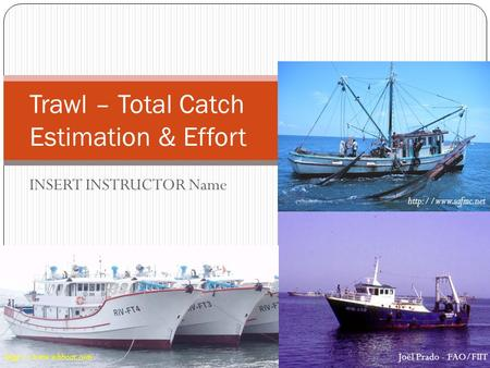 INSERT INSTRUCTOR Name Trawl – Total Catch Estimation & Effort  Joël Prado - FAO/FIIT