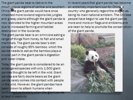 The giant panda bear is native to the mountainous regions of central and southern China. The giant panda would have once inhabited more lowland regions.