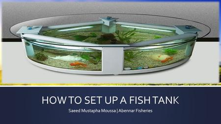 HOW TO SET UP A FISH TANK Saeed Mustapha Moussa | Abennar Fisheries.