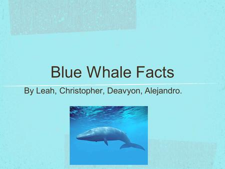 Blue Whale Facts By Leah, Christopher, Deavyon, Alejandro.