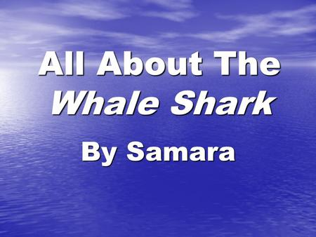 All About The Whale Shark By Samara Table of Contents Where are Whale Sharks found?4 What do Whale Shark s look like?6 How did the Whale Shark get.
