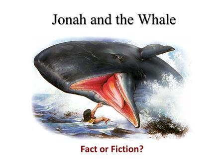 Jonah and the Whale Fact or Fiction?.