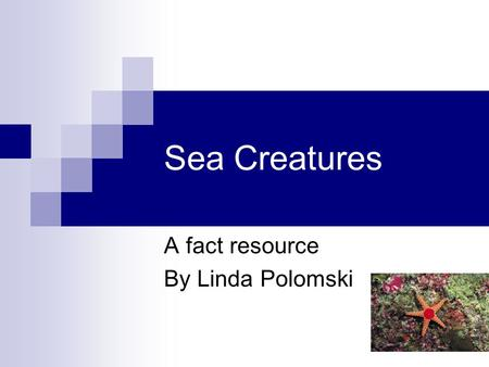 Sea Creatures A fact resource By Linda Polomski. OctopusSlide 2 The octopus is a mollusk that has no outside shell. There are over 100 different species.