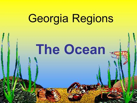 Georgia Regions The Ocean. Let's Activate Our Brains Look at the word below. What does it make you think of? What do you know? OCEAN.