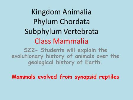 Kingdom Animalia Phylum Chordata Subphylum Vertebrata Class Mammalia SZ2- Students will explain the evolutionary history of animals over the geological.