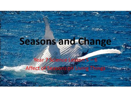 Seasons and Change Year 7 Science Lesson 5 – 6 Affect of Seasons on Living Things.