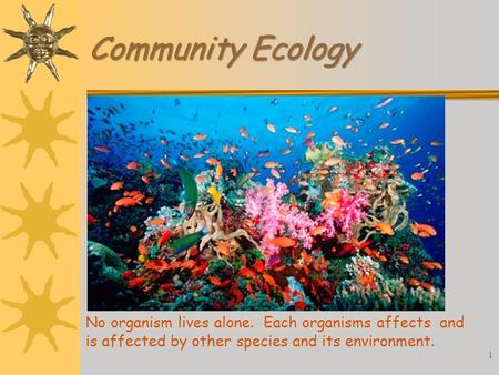 Community Ecology No organism lives alone. Each organisms affects and is affected by other species and its environment. 1.