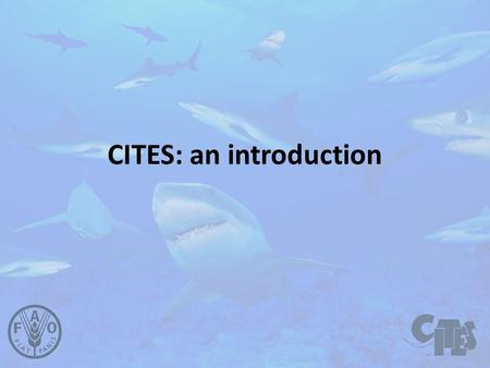 CITES: an introduction. Convention on International Trade in Endangered Species of Wild Fauna and Flora Washington, D.C., on 3 March 1973.