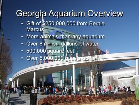 Gift of $250,000,000 from Bernie Marcus More animals than any aquarium Over 8 million gallons of water 500,000 square feet Over 5,000,000 guests so far.