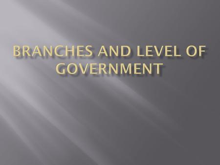 Branches and Level of Government