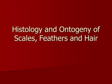 Histology and Ontogeny of Scales, Feathers and Hair.