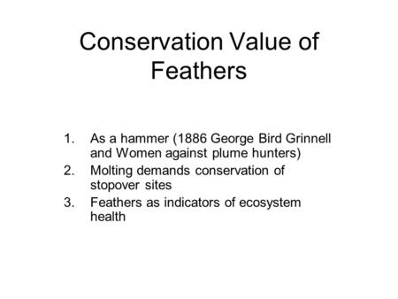 Conservation Value of Feathers 1.As a hammer (1886 George Bird Grinnell and Women against plume hunters) 2.Molting demands conservation of stopover sites.