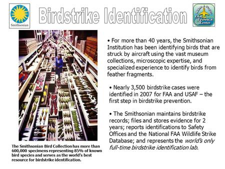 The Smithsonian Bird Collection has more than 600,000 specimens representing 85% of known bird species and serves as the world's best resource for birdstrike.