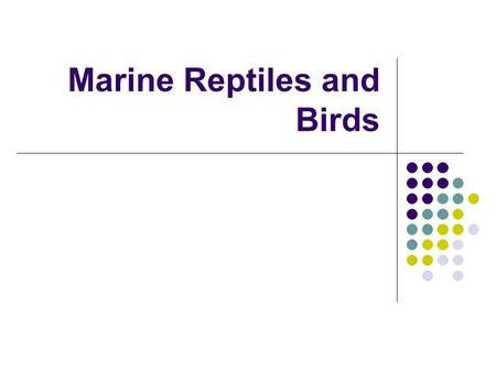 Marine Reptiles and Birds. Class Reptilia Characteristics Strong bony skeleton Well developed lungs Most have 2 pairs of legs Legs are thick Toes with.
