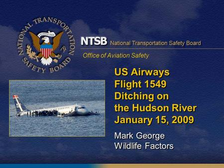 Office of Aviation Safety US Airways Flight 1549 Ditching on the Hudson River January 15, 2009 Mark George Wildlife Factors.