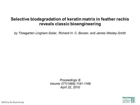 Selective biodegradation of keratin matrix in feather rachis reveals classic bioengineering by Theagarten Lingham-Soliar, Richard H. C. Bonser, and James.