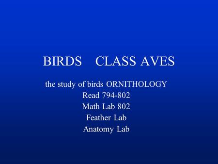 BIRDS CLASS AVES the study of birds ORNITHOLOGY Read 794-802 Math Lab 802 Feather Lab Anatomy Lab.
