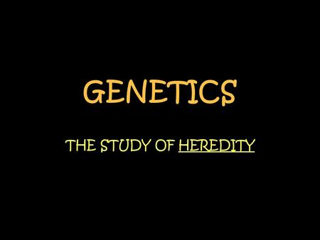 GENETICS THE STUDY OF HEREDITY.