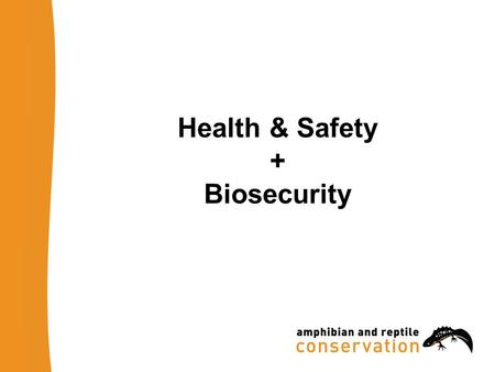 Health & Safety + Biosecurity. H&S: Risk Assessment Know where you are going Carry out a Risk Assessment –day and/or night visits? –Identify hazards on.