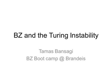 BZ and the Turing Instability Tamas Bansagi BZ Boot Brandeis.