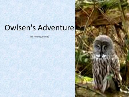 Owlsen's Adventure By Tommy Jenkins. Once upon a time there was an owl named Owslen. He lived with his sister, Owlena. They would go about doing normal.