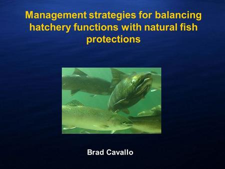 Management strategies for balancing hatchery functions with natural fish protections Brad Cavallo.