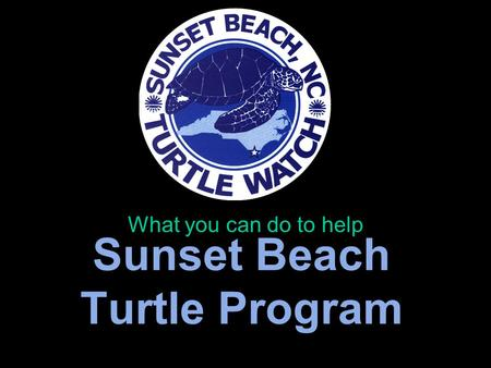 Sunset Beach Turtle Program What you can do to help.