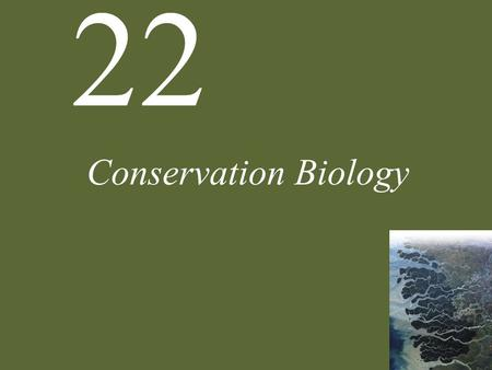 22 <strong>Conservation</strong> Biology. 22 <strong>Conservation</strong> Biology Case Study: Can Birds and Bombs Coexist? <strong>Conservation</strong> Biology Declining Biodiversity Threats to Biodiversity.