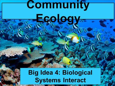 Community Ecology Big Idea 4: Biological Systems Interact.