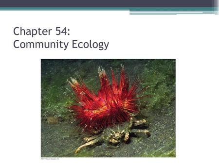 Chapter 54: Community Ecology