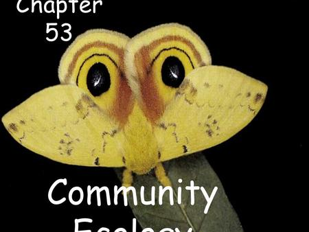 Chapter 53 Community Ecology.