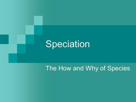 The How and Why of Species