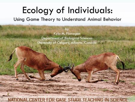 Ecology of Individuals: Using Game Theory to Understand Animal Behavior by Kyla M. Flanagan Department of Biological Sciences University of Calgary, Alberta,