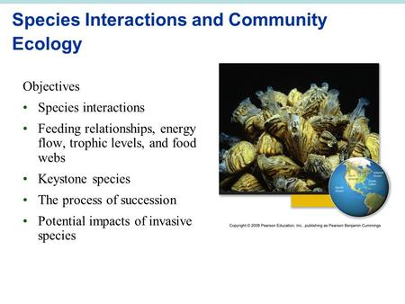 Species Interactions and Community Ecology