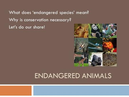 ENDANGERED ANIMALS What does 'endangered species' mean? Why is conservation necessary? Let's do our share!