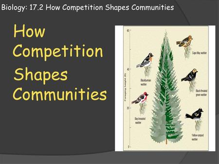 Biology: 17.2 How Competition Shapes Communities