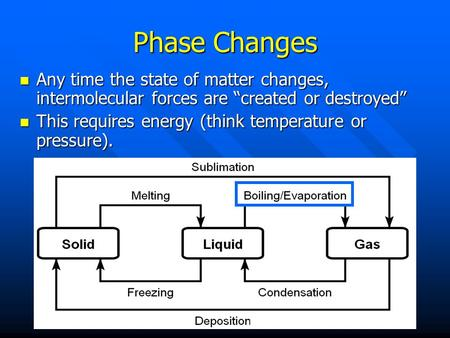 "Phase Changes Any time the state of matter changes, intermolecular forces are ""created or destroyed"" This requires energy (think temperature or pressure)."