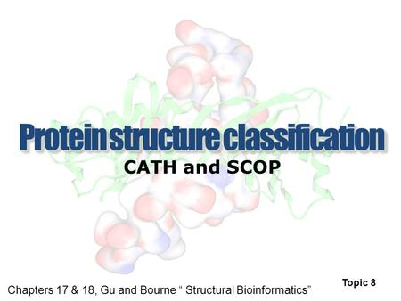 "CATH and SCOP Topic 8 Chapters 17 & 18, Gu and Bourne "" Structural Bioinformatics"""