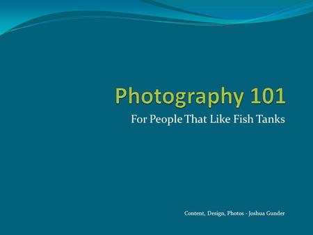 For People That Like Fish Tanks Content, Design, Photos - Joshua Gunder.