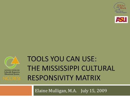 TOOLS YOU CAN USE: THE MISSISSIPPI CULTURAL RESPONSIVITY MATRIX Elaine Mulligan, M.A. July 15, 2009.