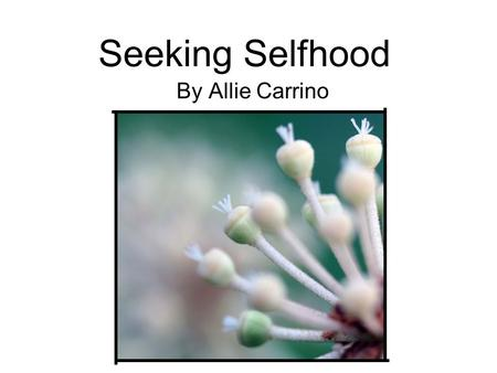 Seeking Selfhood By Allie Carrino. Artistic Statement With society being so easily influenced by the media, it's become nearly impossible to find any.